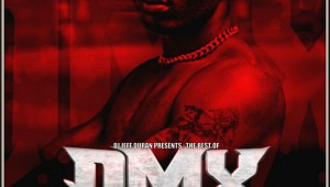 DMX_BEST-front-medium